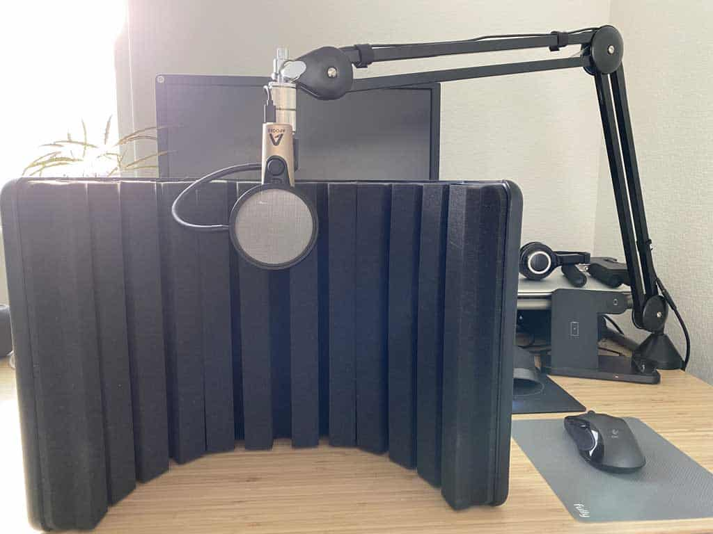 Microphone setup with reflection filter.